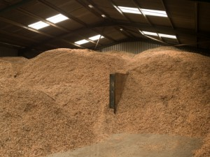 Woodchip pile in Park Hovel