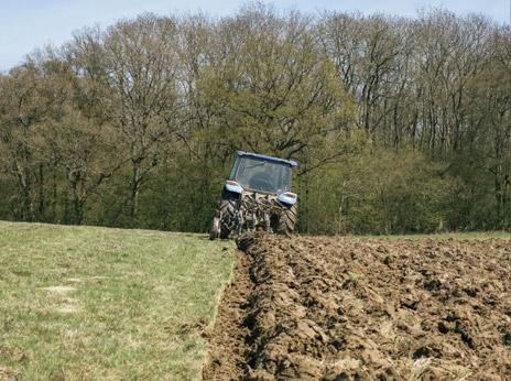 Arable farming 3