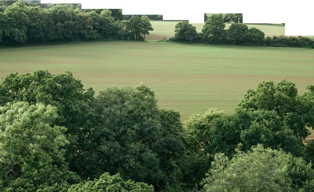 holmbush farm west sussex